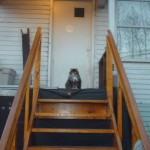 premade stair